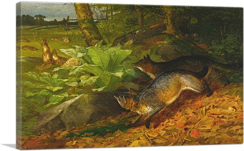 Foxes and Rabits 1874