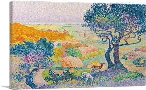 La Plaine De Bormes 1908