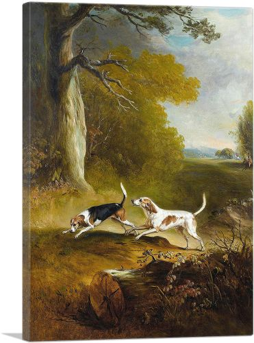 Two Dogs Hunting
