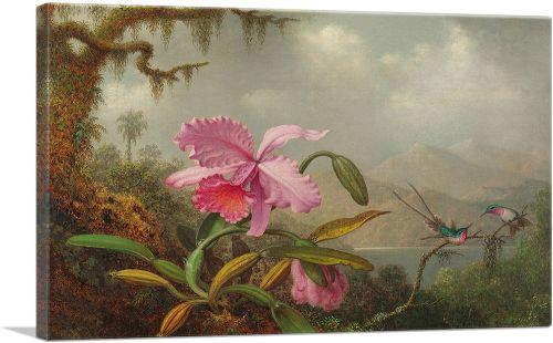 Orchids and Hummingbirds 1890