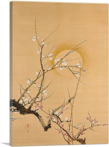 The Moon and Plum Trees