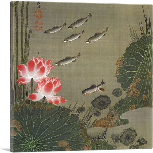 A Shoal of Trout and Lotus