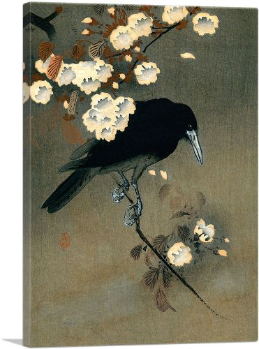 Crow and Blossom 1910