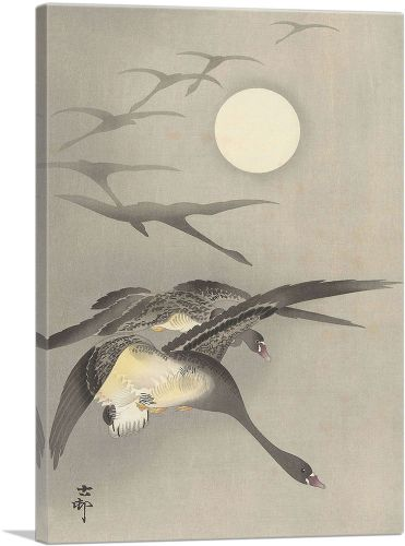 Geese and the Moon