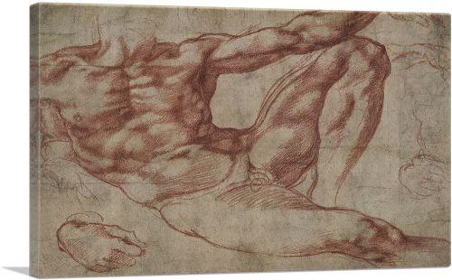 Study for Adam 1511
