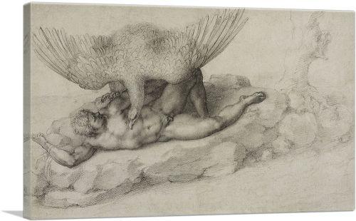 Tityus 1532