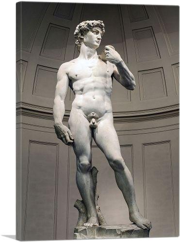 David 1504