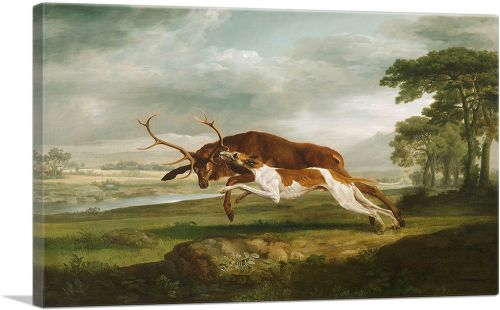 Hound Coursing a Stag 1763