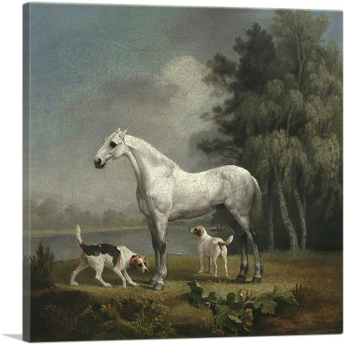 A Dapple Grey Hunter with Two Foxhouds
