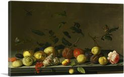 Still Life With Fruit, Shells, Rose and Insects