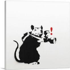 Paparazzi Rat-1-Panel-26x26x.75 Thick