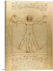 The Vitruvian Man 1485