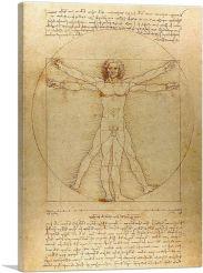 The Vitruvian Man 1485