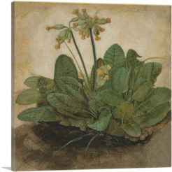 Tuft of Cowslips
