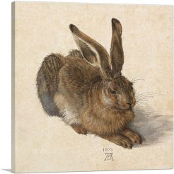 Young Hare 1502
