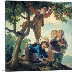 Boys Picking Fruit 1778