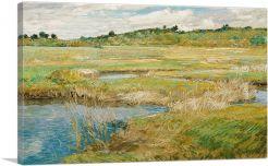 The Concord Meadow - Concord, Massachusetts 1891