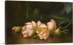 Lotus Flowers with A Landscape Painting in the Background 1900