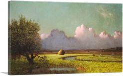 Sunlight and Shadow - The Newbury Marshes 1885