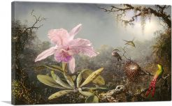Cattleya Orchid and Three Hummingbirds 1871