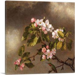 Hummingbird and Apple Blossoms 1875