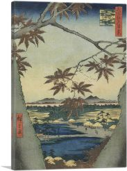 The Maple Leaves of Mama - Tekona Shrine and Tsugi Bridge 1857