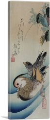 Two Mandarin Ducks 1838