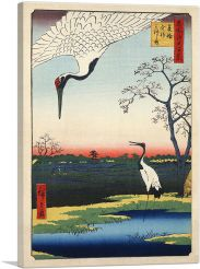 Two Red-Crowned Cranes 1857