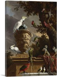 The Menagerie 1690