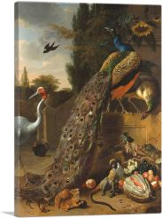Peacocks 1683