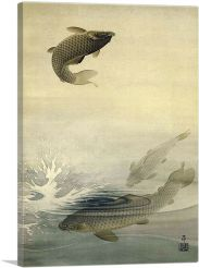 Three Carp One Jumping