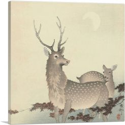 Two Deer With Moon