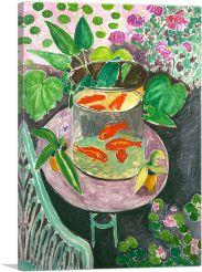 Goldfish 1911
