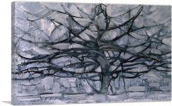 Gray Tree 1911