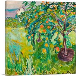 Apple Tree by the Studio 1920