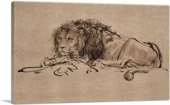 A Lion Lying Down 1650
