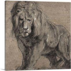 Lion 1613