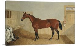 William Orde's Bay Filly Beeswing in a Stable