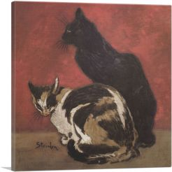 Cats 1910