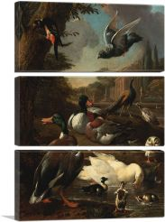 A Peacock, Pigeon, Ducks And Other Birds In a Garden Setting-3-Panels-90x60x1.5 Thick