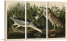 Black-Crowned Night-Heron-3-Panels-90x60x1.5 Thick