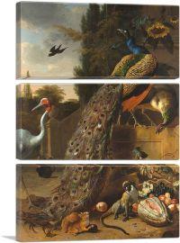 Peacocks 1683-3-Panels-90x60x1.5 Thick