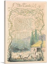 Songs of Innocence and of Experience - The Lamb 1789