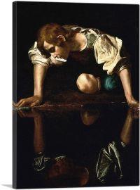 Narcissus 1599