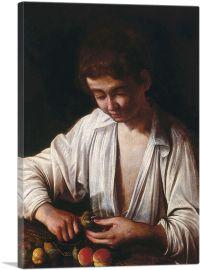 Boy Peeling Fruit 1592
