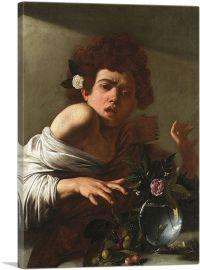 Boy Bitten by a Lizard 1596