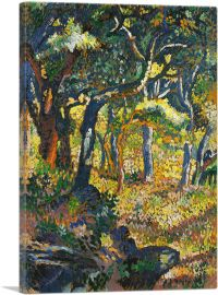 Clearing in Provence 1906