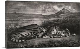 Royal Tiger 1829