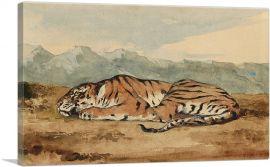 Royal Tiger
