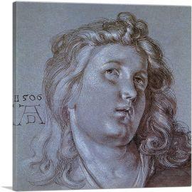 Head of an Angel 1506